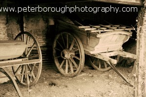 old carriage commercial photography shoot, market deeping